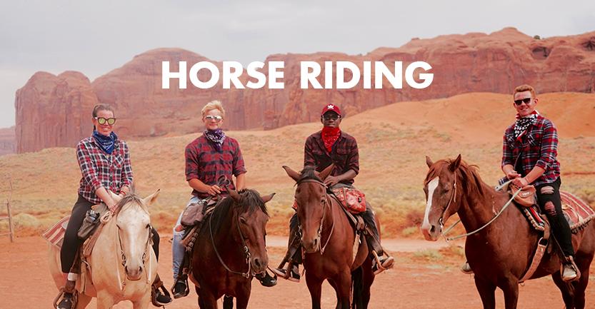 horse_833.jpg